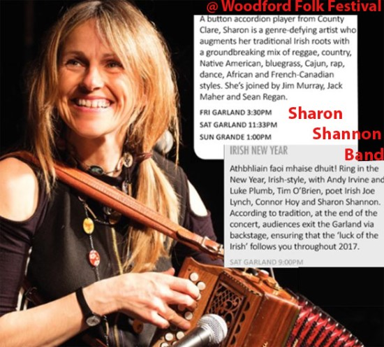 Sharon Shannon Band at the woodford folk festival australia